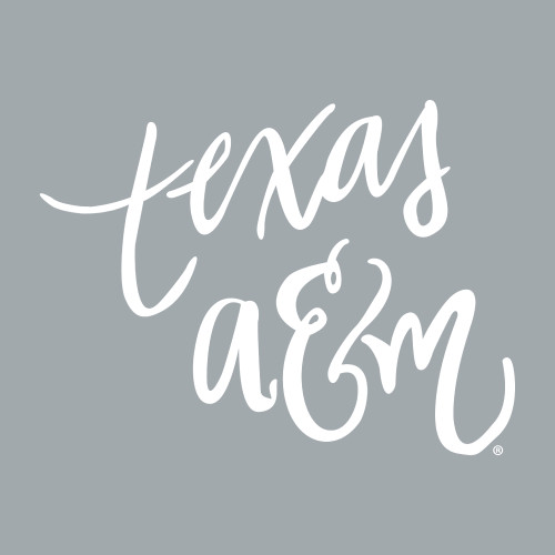 Texas A&M 6.75 x 5 Script Font Decal | White