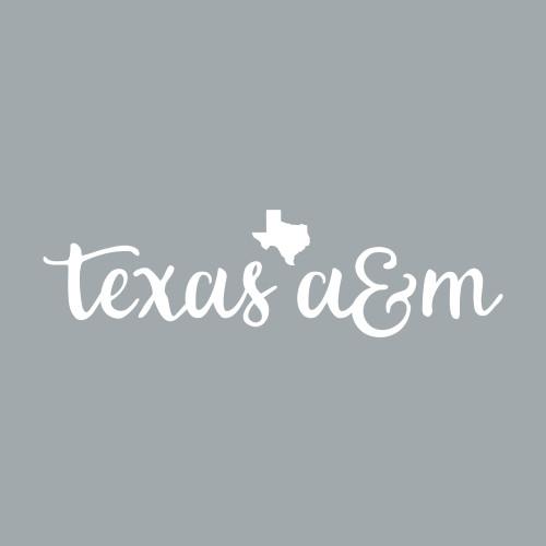 Texas A&M Aggies 8 x 2 Script Font With Lonestar Decal | White