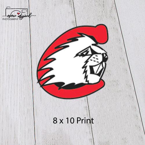 8 X 10 PRINT CUMBERLAND