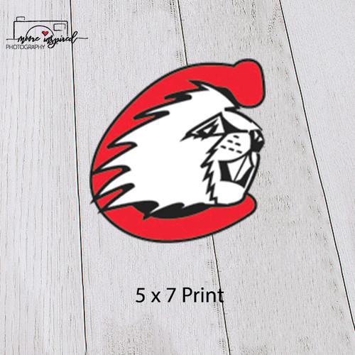5 X 7 PRINT CUMBERLAND