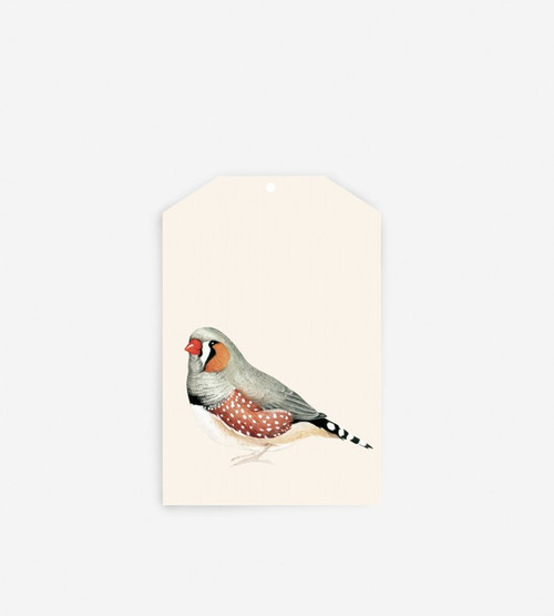 FATHER RABBIT STATIONERY GIFT TAG | BIRD