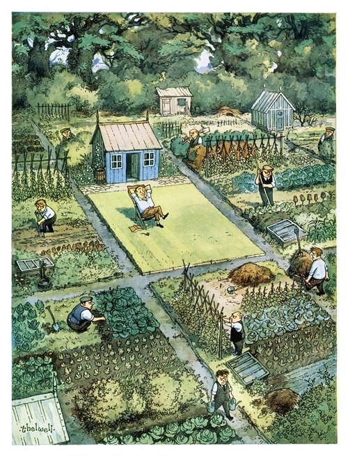 Punch Cartoon Gardening - Woodmansterne