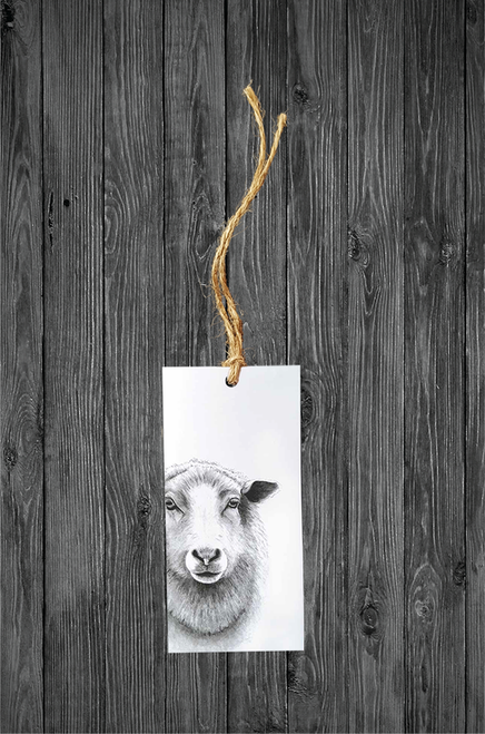 Cathy Hamilton Artworks- Sheep Gift Tag Card