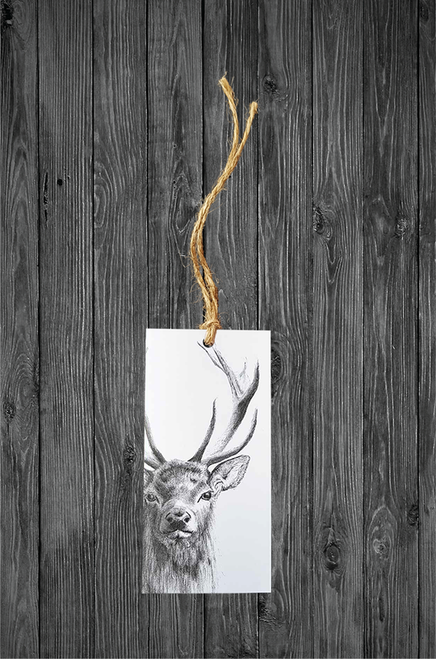 Cathy Hamilton Artworks- Deer Stag Gift Tag Card