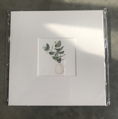Father Rabbit Print - Eucalyptus in Vase,  Mounted Ready for Frame