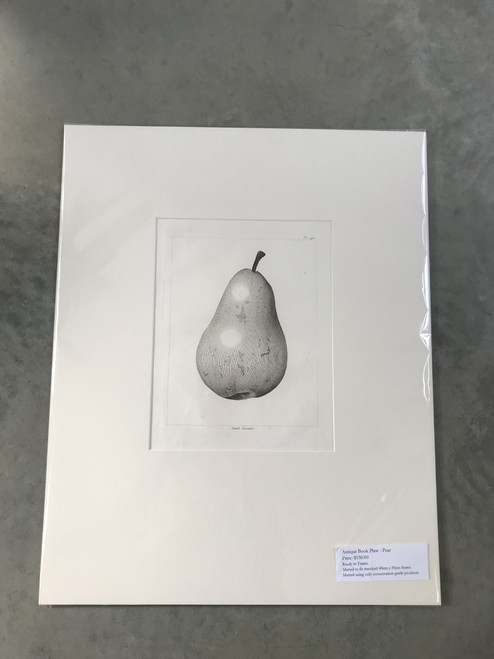 French Antique Book Plate, Pear No. 1 - Mounted Print