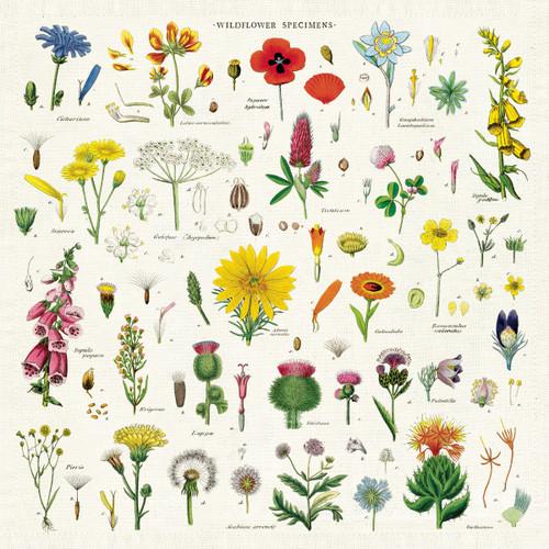 Cavallini Napkins Wildflowers- Set of 4