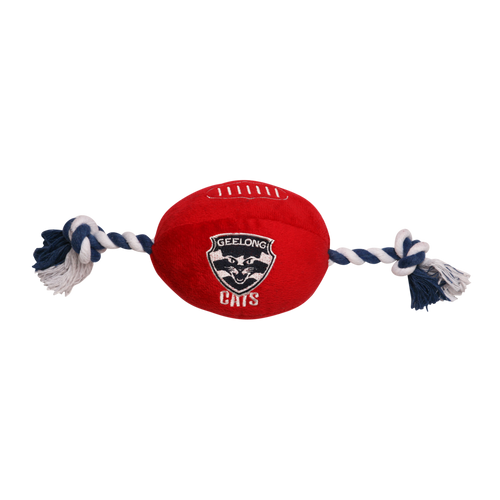 Pets Supporter Football Toy