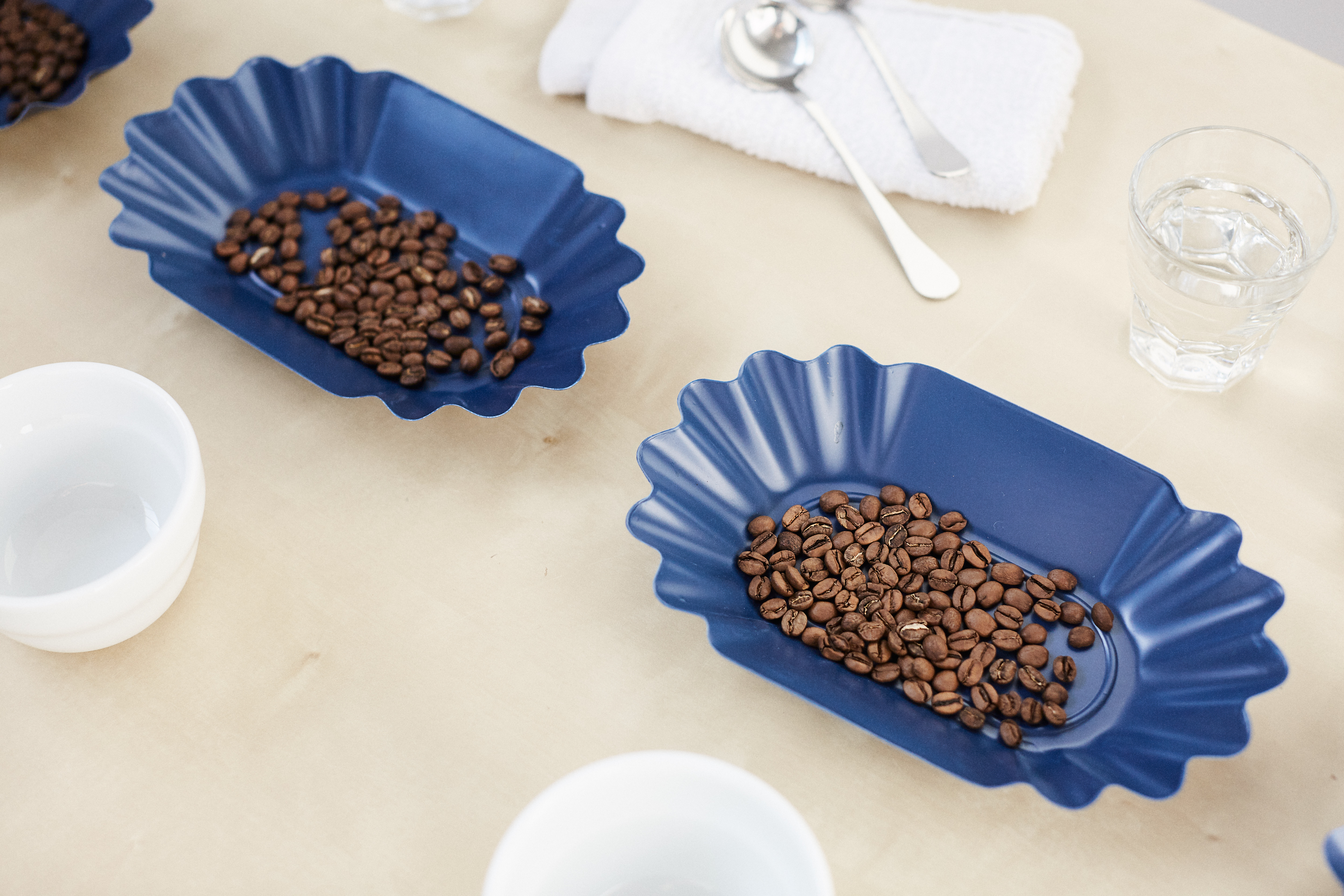 two blue sample trays with coffee beans