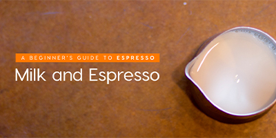 espresso and milk for beginners
