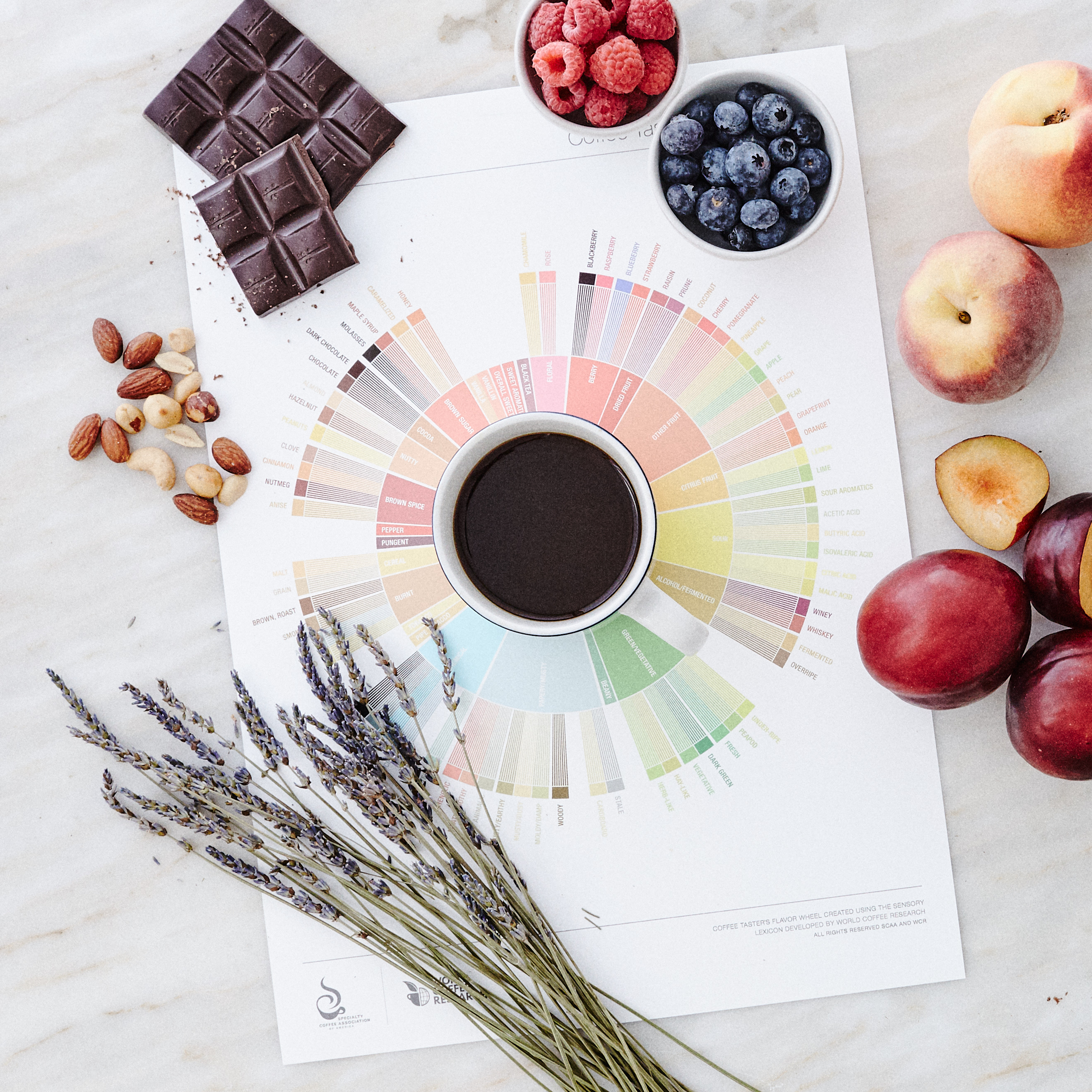 Coffee Flavor Wheel with with and ingredients
