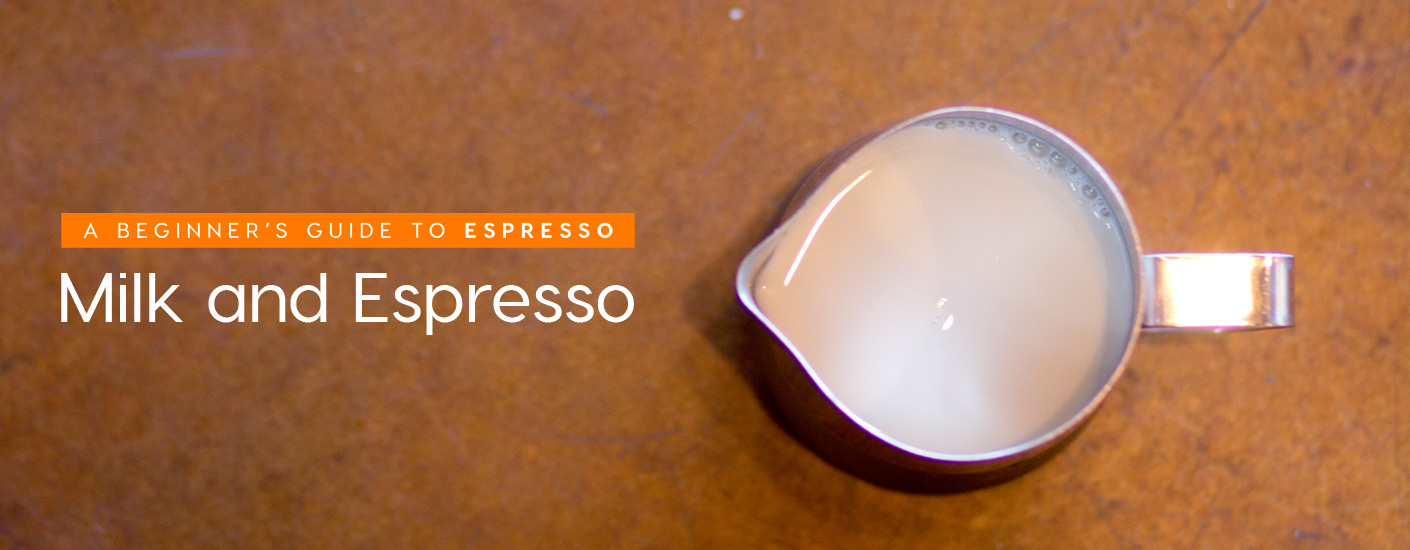 Milk and Espresso for Beginners