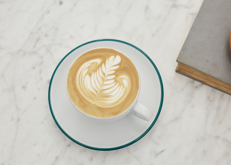 A rosetta design, in a white cup served on a saucer