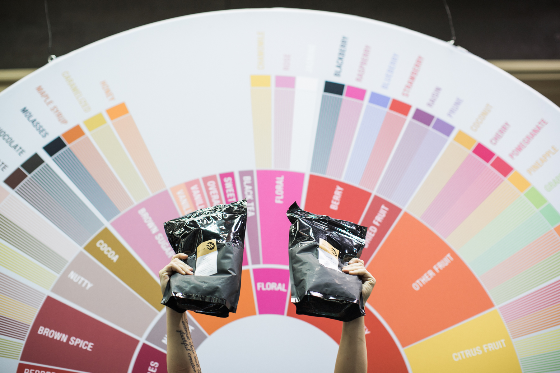 Two arms holding two bags of coffee in front of a coffee tasting flavor wheel at the 2018 Coffee Expo.