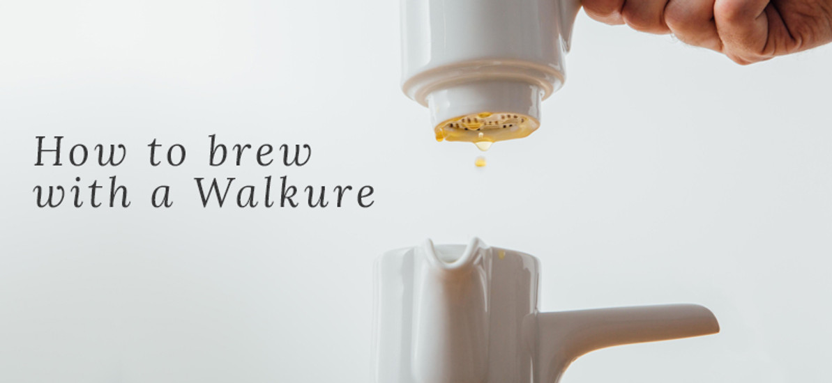 How to Brew Coffee with a Walkure Porcelain Brewer