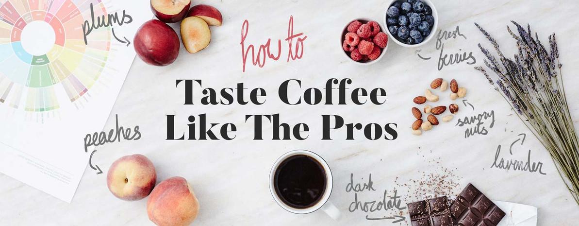 Coffee 101: How to Taste Coffee Like the Pros