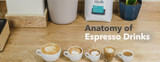 Anatomy of Espresso Drinks: A How-To Guide and History of Espresso Drinks