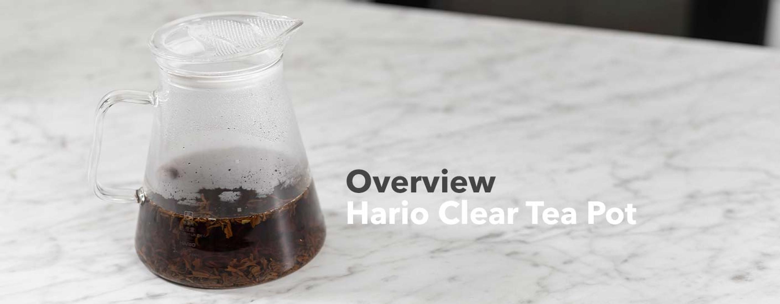 Hario Clear Tea Pot