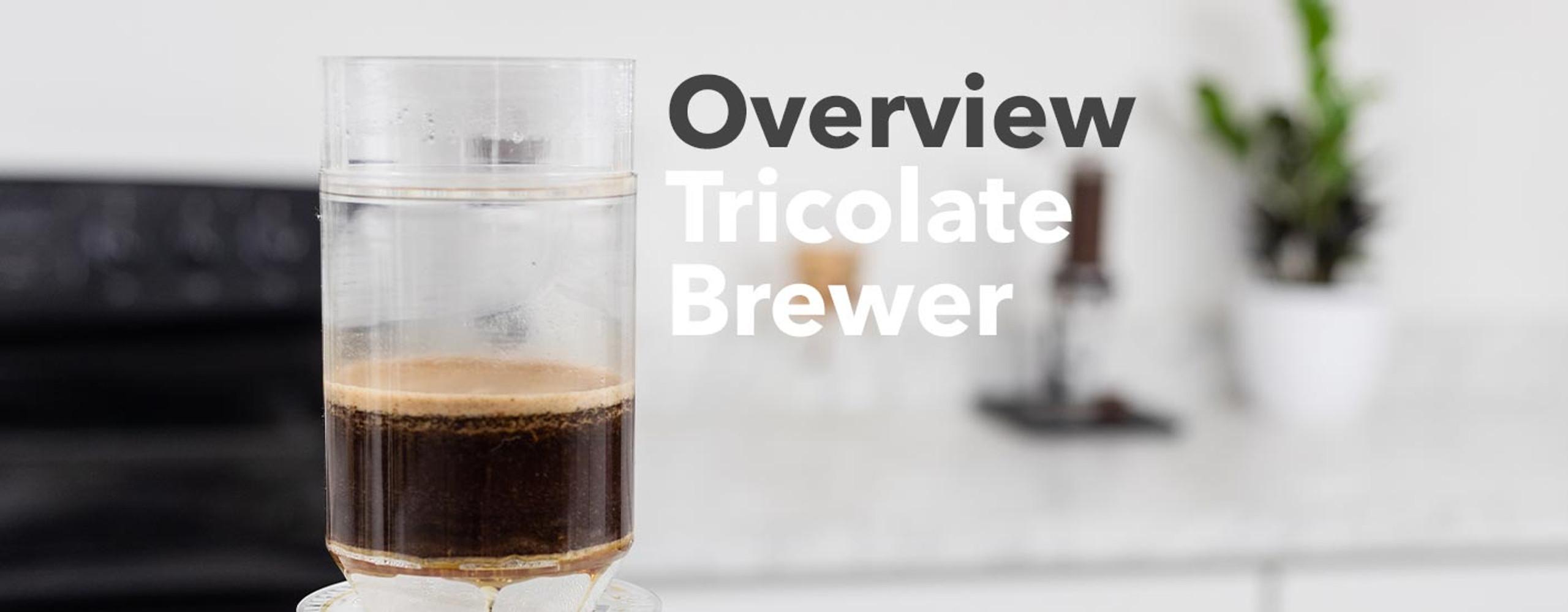 Tricolate Brewer