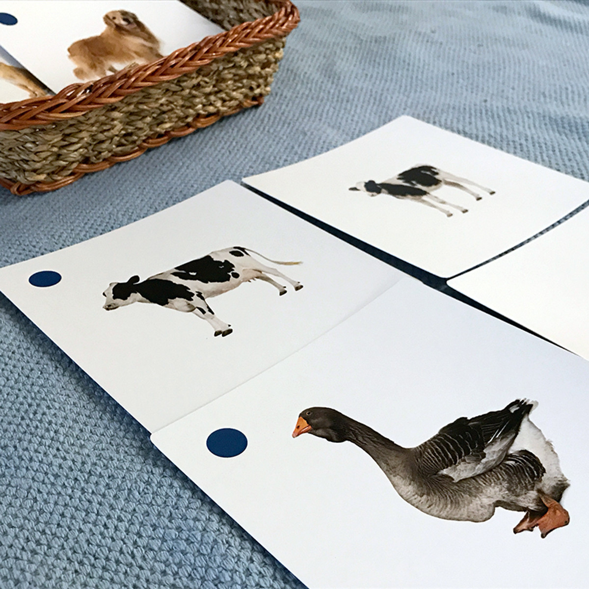Farm Animals and Their Young Matching Cards