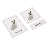 Dogs 3 Part Cards Kit II (EC-0421A)