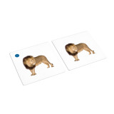 African Animal Matching Cards (IT-0010)