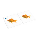 Fish Matching Cards (IT-0017)