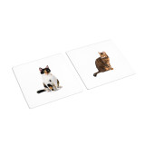 Dogs - Cats Sorting Cards (IT-0072)