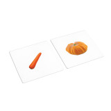 Same Color Different Vegetables Sorting Cards (IT-0091)