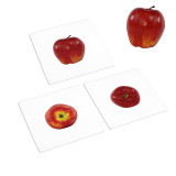 Fruits to Object Activities Set 1 (IT-0084)