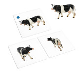 Farm Animals to Object Activities (IT-0088)