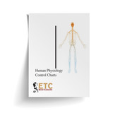 Human Physiology Control Charts - Digital Edition