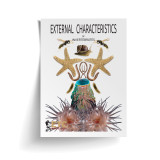 External Characteristics of Invertebrates