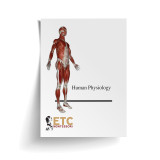 Human Physiology Level 9-12