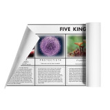 Five Kingdom Chart Bundle