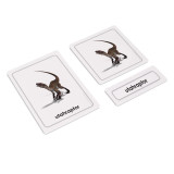 Dinosaurs 3 Part Cards (EC-0435A)
