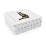 Domestic Animals - Matching Cards (EC-0426B)