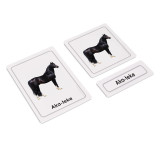 Horses 3 Part Cards (EC-0427A)