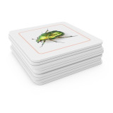 Insects - Matching Cards (EC-0440B)