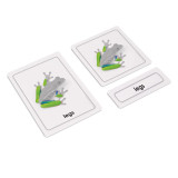 Parts of a Frog 3 Part Cards (EC-0458)