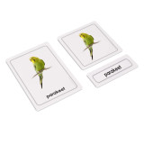 Pets 3 Part Cards (EC-0477A)