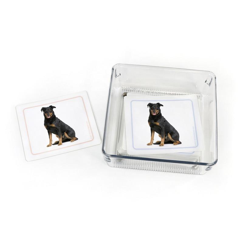 Dogs - Matching Cards Kit II (EC-0421B)