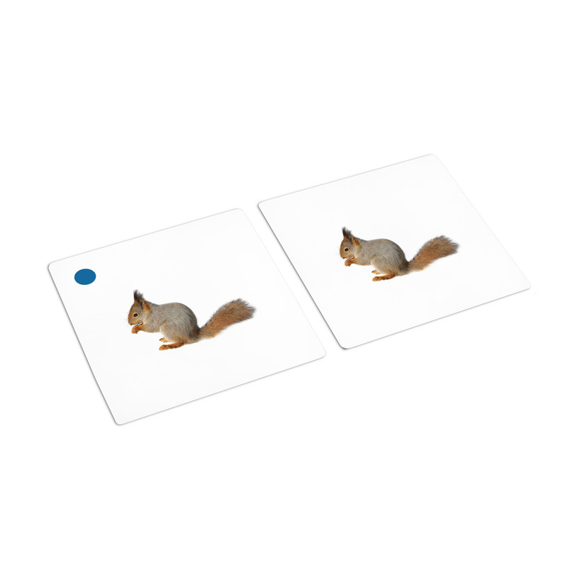 Mammals Matching Cards (IT-0012)