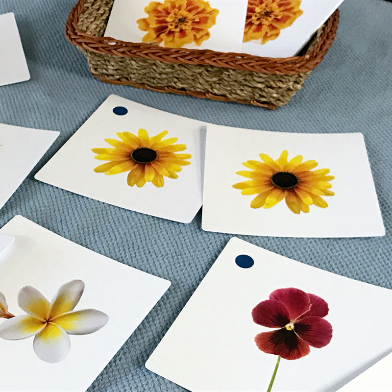 Flowers Matching Cards (IT-0040)