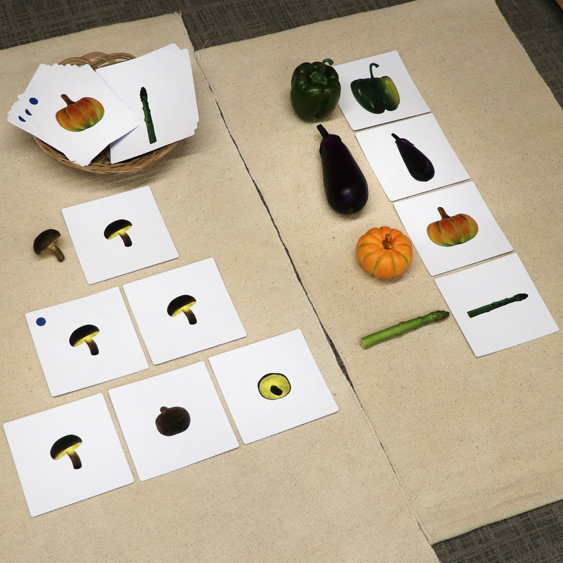 Vegetables to Object Activities Set 2 (IT-0094)