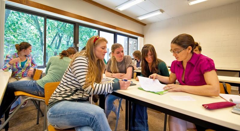 Montessori School Improvement Consulting