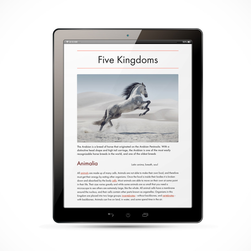The Five Kingdom Chart - Digital Edition