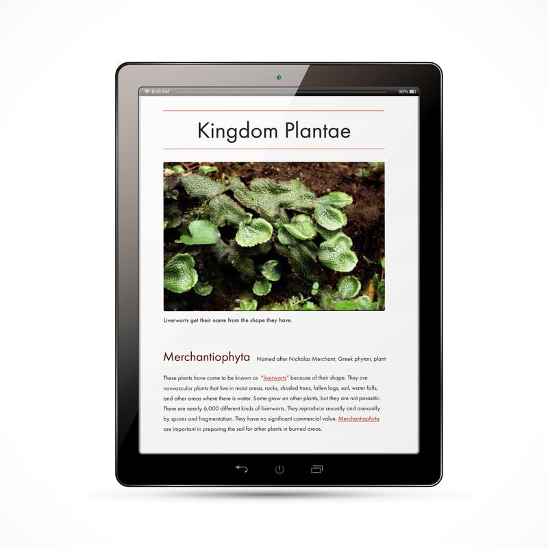 Plant Kingdom Chart - Digital Edition
