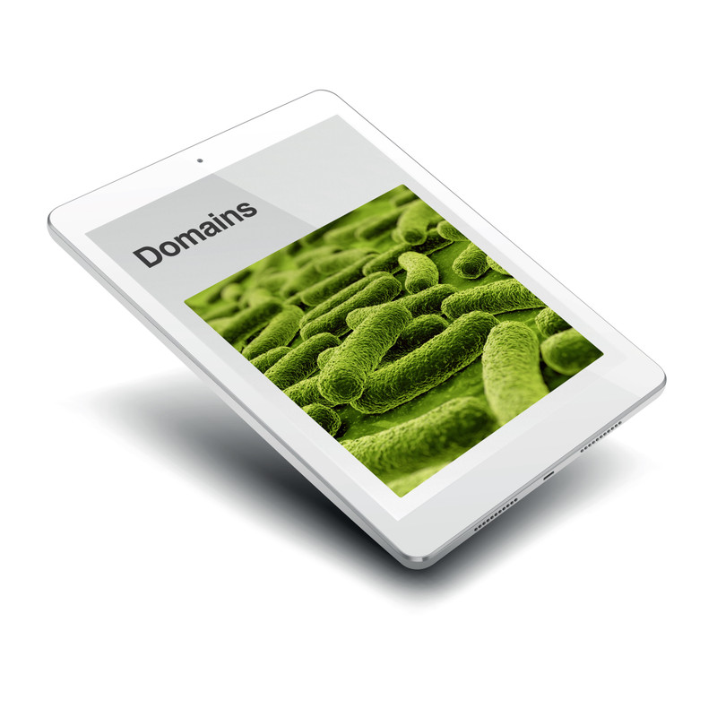 The Three Domains - Digital Edition