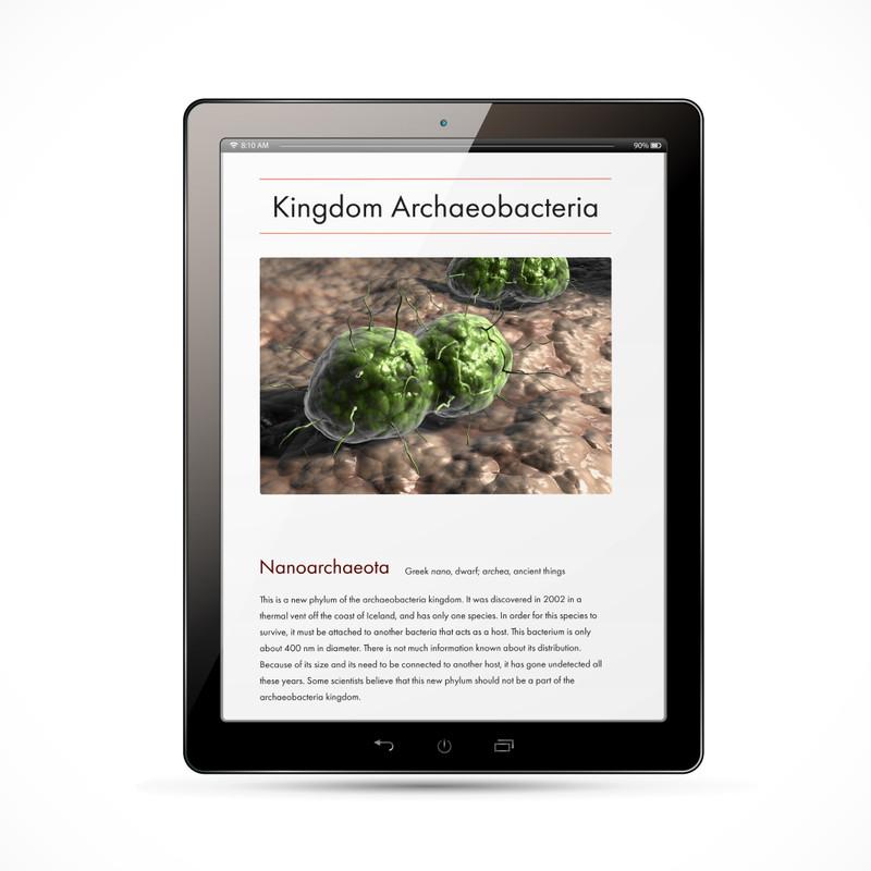 Archaeobacteria Kingdom Chart - Digital Edition